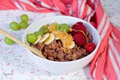 Porridge végan au chocolat