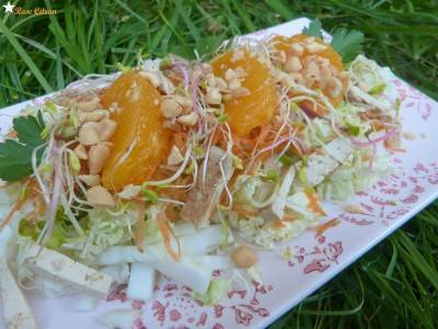 Salade asiatique végane simplissime